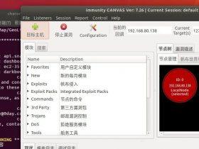 Immunity Canvas安装踩坑记录及虚拟机下载