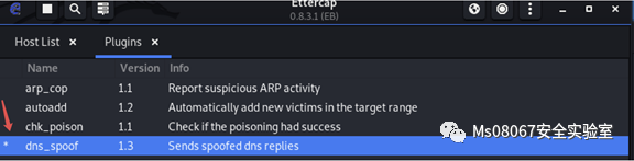 手把手教你DNS劫持挂马