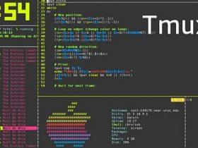 最常用的终端工具 tmux