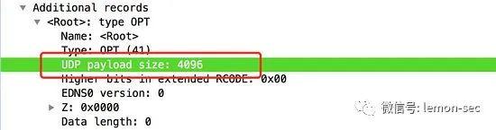 浅析DNS反射放大攻击