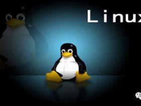 linux下运行中国菜刀