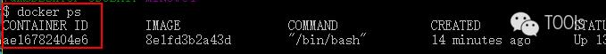 在docker容器中运行kali linux (windows版)