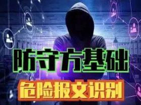 【防守方基础】危险报文识别