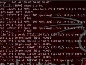 Zmap详细用户手册和DDOS的可行性