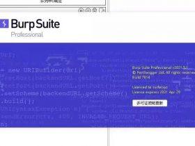 工具|BurpSuite2021.5最新中英版、免装java环境(附下载地址)