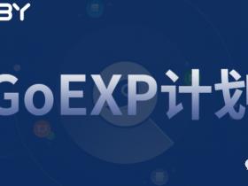 下一个阶段:GoEXP计划