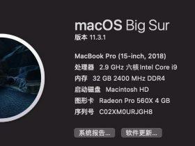 完美解决 macOS Big Sur 11.3.1 系统 Parallels Desktop 16 无法联网、融合模式问题