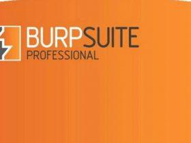 Burp Suite 2021.6 破解版本