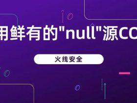 利用鲜有的null源CORS