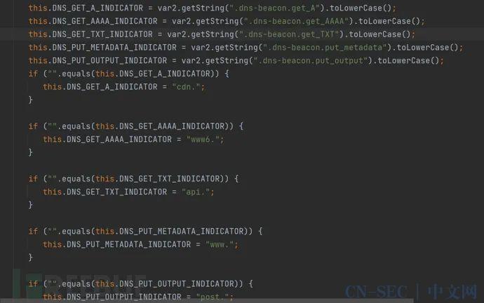 CobaltStrike-DNS隧道设计缺陷