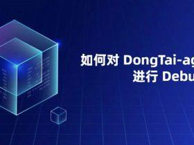 如何对 DongTai-agent-java 进行 Debug