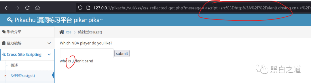 dnslog平台+漏洞盲打合集
