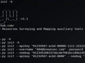 Kunyu(坤舆)-基于 ZoomEye API 的高效信息收集工具