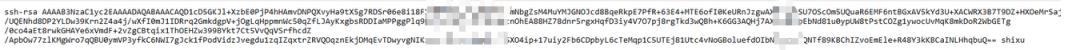 平台某项目-服务器SSH密钥与日志和命令记录泄露