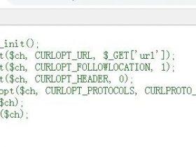 ssrf常用协议和特殊符号使用的坑