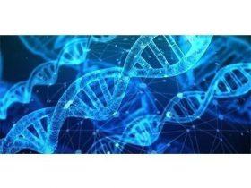 CyberMDX发布医疗行业安全支出报告