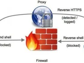 局域网内DNS毒化详细操作过程