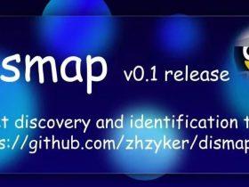 工具推荐: dismap 快速资产发现和指纹识别