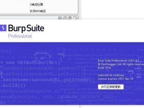 BurpSuite2021.5最新破解版、免装java环境,中英双版,高速下载