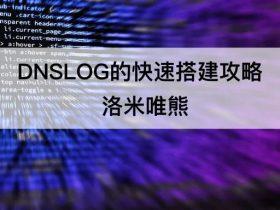 DNSLOG的快速搭建攻略