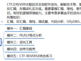 攻防世界新手练习题_REVERSE(逆向)
