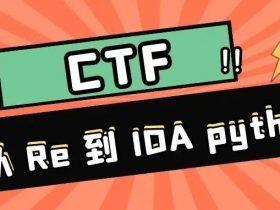 『CTF』从 Re 到 IDA python
