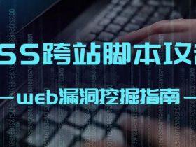 web漏洞挖掘指南 -XSS跨站脚本攻击