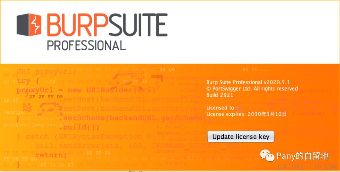 Burp Suite Pro v2020.5.1 Loader & Keygen