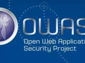 【项目发布】 OWASP SAMM 2.0 中文版