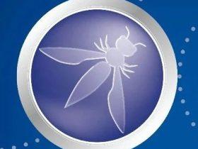 燃!安全有你-第七期 | OWASP SAMM 2.0 项目解析