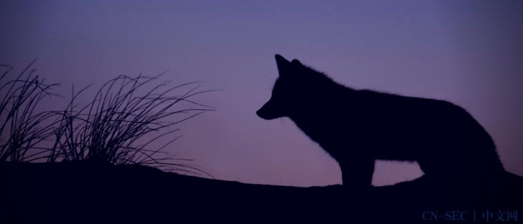 Purple Fox攻击流程中增加了新的CVE、隐写术和虚拟化技术