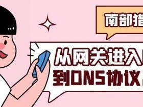 从网关进入内网到DNS协议出网