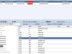 Weblogic CVE-2020-2551漏洞复现&CS实战利用