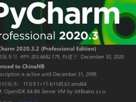JetBrains 2020.3.2 最新激活文件