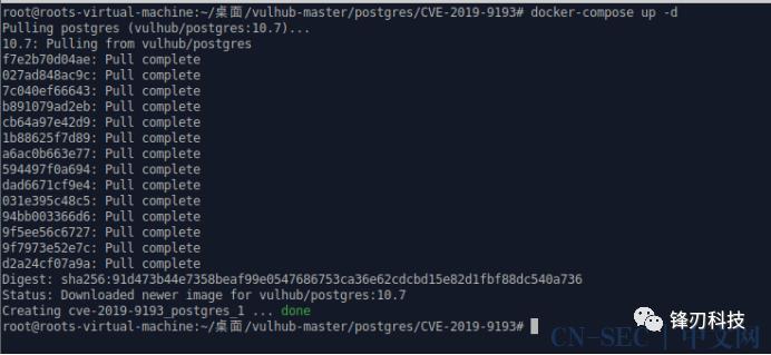 PostgreSQL 高权限命令执行漏洞(CVE-2019-9193)复现
