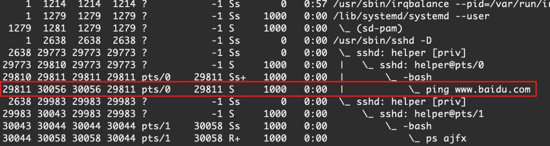 Linux 守护进程|应急响应