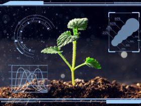 如何应对智能农业的网络安全挑战?