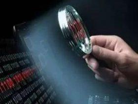 【代码相似性检测技术】在司法鉴定领域的应用