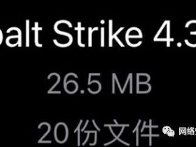 Cobalt Strike 4.3