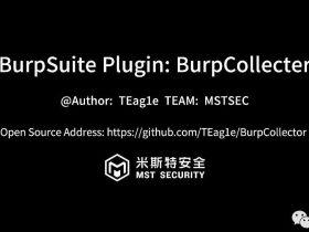开源项目 | BurpCollector-利用BurpSuite收集字典