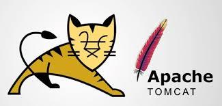 Tomcat WebSocket 拒绝服务漏洞附EXP(CVE-2020-13935)