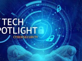 2021年美国网络安全:制止疯狂