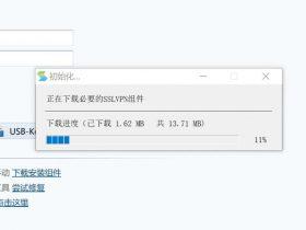 某VPN客户端远程下载文件执行挖掘(已修复)