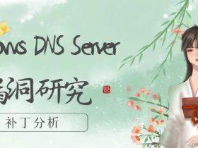 Windows DNS Server 漏洞研究之补丁分析