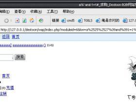 【漏洞】Destoon B2B - 注射与后台代码执行