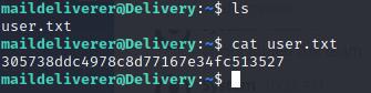 【渗透测试】hackthebox靶场之Delivery