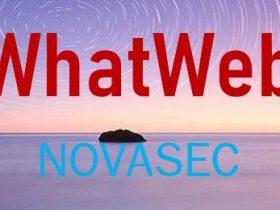 Whatweb特征修改、插件编写、EXE打包