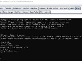 Web工具-burp+SQLmap
