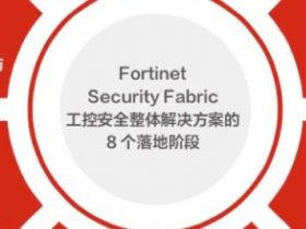 Fortinet,一个务实的理想主义者